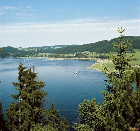 Webcam Saalburg